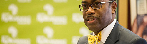 Adesina: Africa must look beyond raw materials