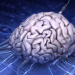 Intelligence can now be explained by an algorithm in your brain!